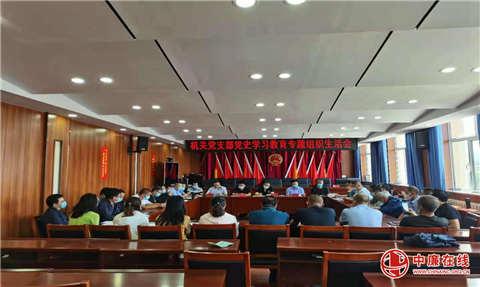 隆盛庄镇机关党支部召开党史学习教育专题组织生活会